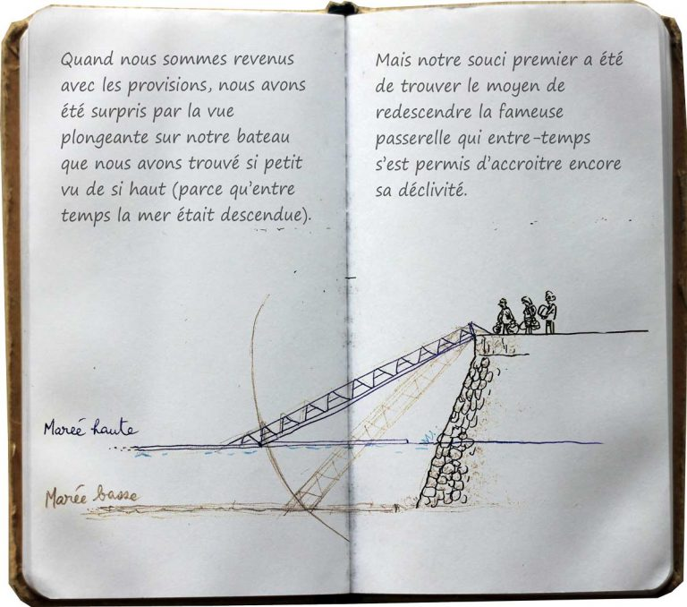 journal-p11-12(1)